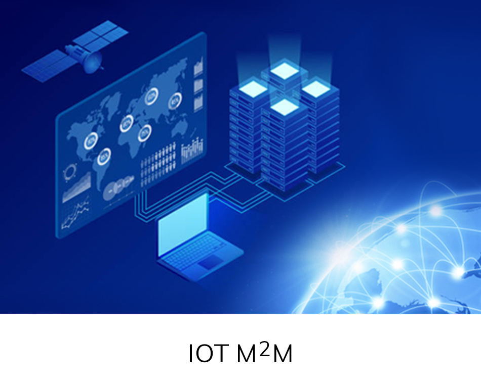 Business Segment - IOT M2M